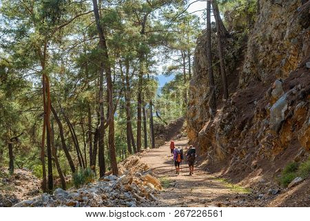 Group Of Tourists With Large Backpacks Goes Through The Forest Along The Lycian Trail. Turkey