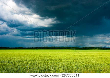 Last Rays Of Sunlight Over A Crop Field Before A Massive Vernal Thunderstorm Arrives, South Friuli,