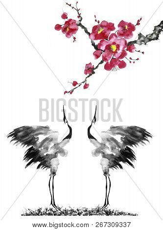 Japanese Cranes Bird Drawing .  Red Stylized Flowers Of Plum Mei, Wild Apricots And Sakura . Waterco
