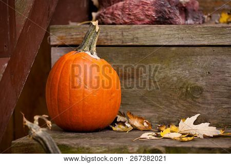 Seasonal Brown And Orange Porch Pumpkin Halloween Scene