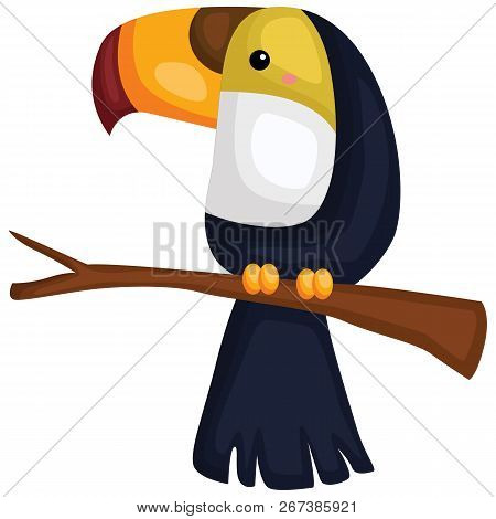 A Vector Of A Cute Toucan Bird Hanging