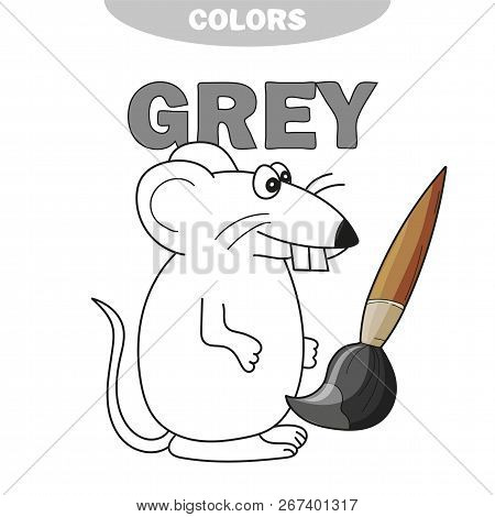 Learn The Color Gray - Things That Are Gray Color - Mouse - Coloring Book. Illustration Of Primary C