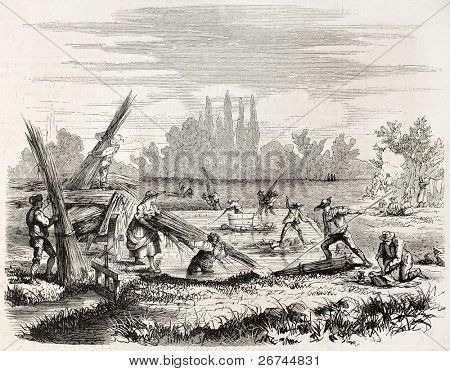 Hemp retting on Rhine bank. Created by Lallemand, published on L'Illustration, Journal Universel, Paris, 1860