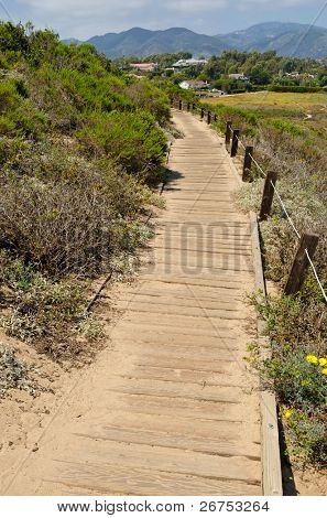 Fragment of Point Dume trail in Malibu, California. poster