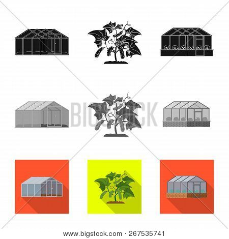 Vector Illustration Of Greenhouse And Plant Icon. Set Of Greenhouse And Garden Vector Icon For Stock