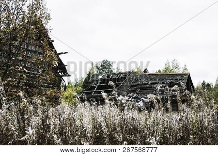 Destroyed Wooden Houses In An Uninhabited Village On A Cloudy Autumn Day.