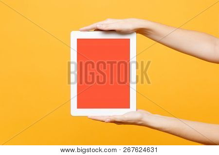 Close Up Female Hold In Hand Tablet Pc Pad With Blank Empty Screen With Place For Text Or Image, Wor