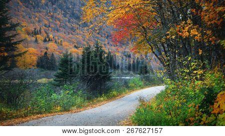 Scenic road through Parc de la Jacques-cartier national in Quebec