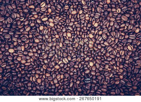 Roasted Coffee Beans. Coffee Background. Coffee Beans Background. Coffee Beans Texture