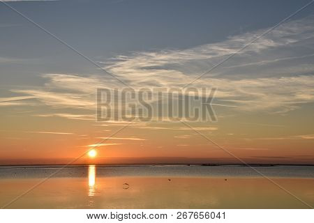 Beautiful Sunset With Birds By Calm Water At The Swedish Island Oland