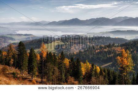 Autumn Forest And Low Tatras And Liptovska Mara At Background, Slovakia