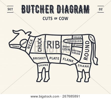 267685891 cut meat set poster vector & photo (free trial) bigstock