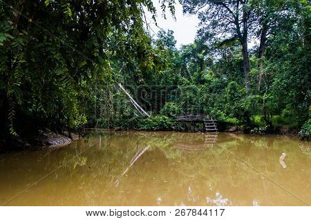An Old Abandoned Wooden Pier In A Lush Rainforest Along The Yellow Water Of Sabah, Borneo. Malaysia.