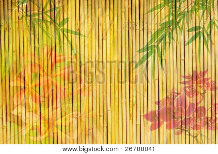 orchids with bamboo background