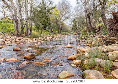 A View Of The Eerste River In Stellenbosch In The Western Cape Province