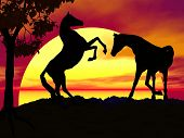 Horses playing at sunset. This creation was fully made in Bryce a computer program. poster