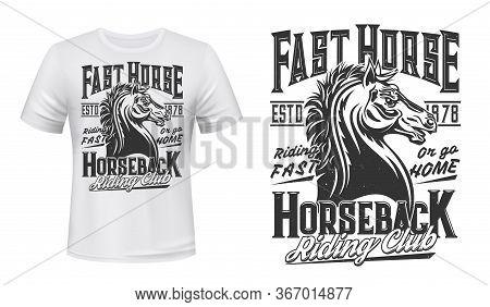 Stallion Horse T-shirt Print Mockup. Equestrian Sports, Horseback Riding Club Apparel Vector Templat