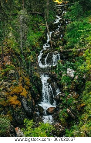 Scenic Landscape With Beautiful Waterfall In Forest Among Rich Vegetation. Clear Spring Water Flows