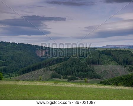 Deforestated Areas In Pine Woods At Sunset In The Carpathian Mountains, Romania.