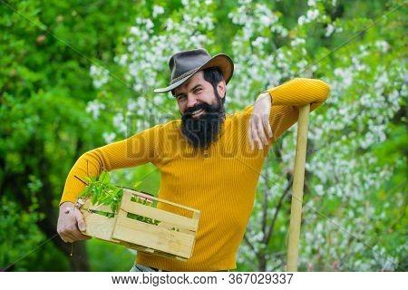 Farmer Works In Garden. Man Farmer. Farmer Hold Box. Bearded Man Preparing To Planting. Gardening. B