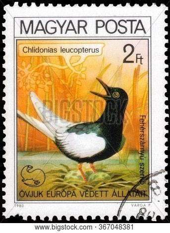 Saint Petersburg, Russia - May 17, 2020: Postage Stamp Issued In The Hungary With The Image Of The W