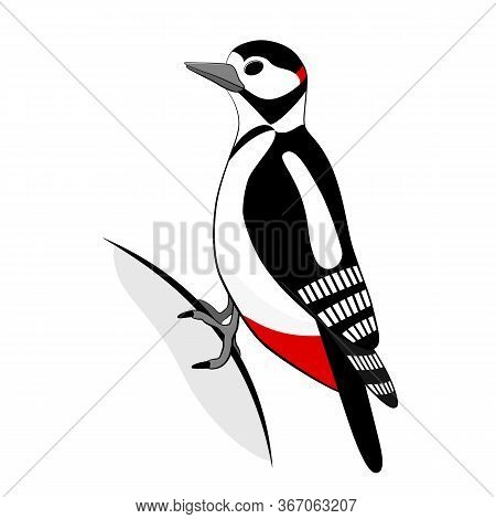 Woodpecker Bird Icon.  Flat Cartoon Vector Illustration Isolated On White Background.