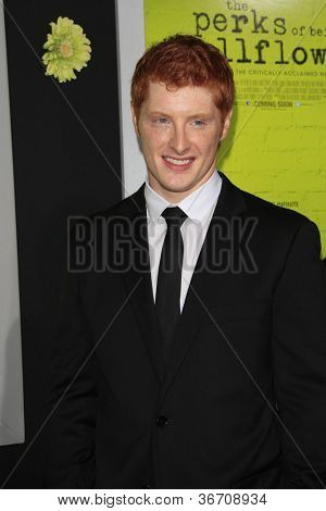 LOS ANGELES - SEP 10:  Brian Balzerini arrives at
