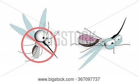Mosquitoes Are Carriers Of Infections. Winged Insects. Insect Mosquito, Mosquito And Pest Illustrati