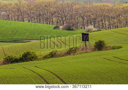 Rural Spring Landscape With Green Fields, Trees And Wooden Hunting Shack, South Moravia, Czech Repub