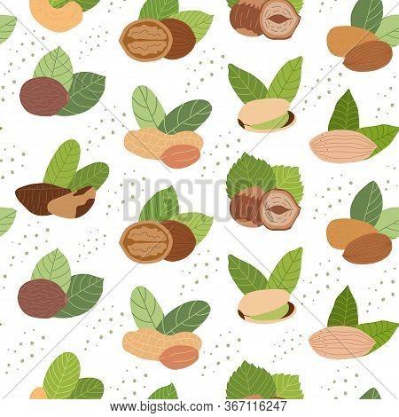Seamless Pattern With Nuts On White Background: Peanuts, Walnut, Cashews,walnuts,hazelnuts, Almonds.