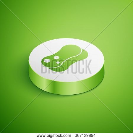 Isometric Sponge Icon Isolated On Green Background. Wisp Of Bast For Washing Dishes. Cleaning Servic