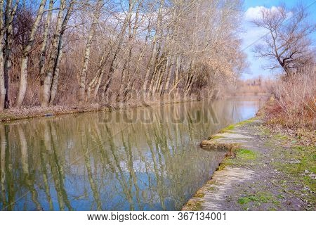 Water Flows Through Canal In The Forest, Bare Trees Are On The Side.