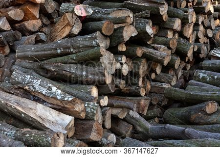 A Huge Stack Of Fire Wood. Woodpile, Cut Logs Stacked Outdoors. Firewood Piled Material Dark Backgro