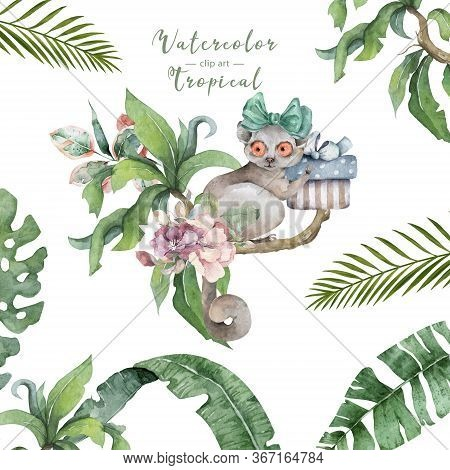 Mouse Lemur. Hand Drawn Cute Watercolor Cartoon Mouse Lemur On Tree With Jungle Leaves On White Back