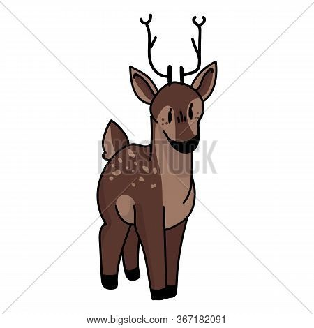 Cute Woodland Deer Vector Illustration. Buck Deer With Antlers. Childlish Hand Drawn Doodle Style. F