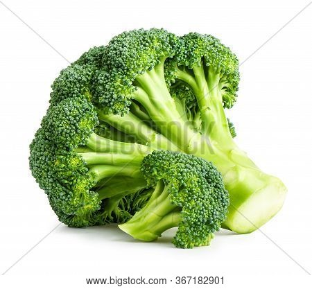Fresh Broccoli Isolated On White Background. Clipping Path Included