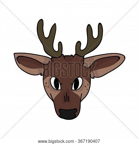 Cute Woodland Fawn Face Vector Illustration. Buck Deer With Antlers. Childlish Hand Drawn Doodle Sty
