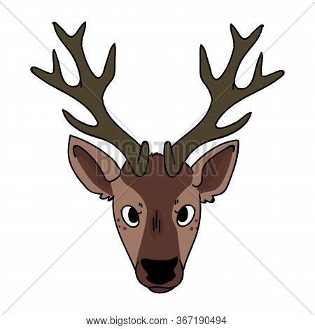Cute Woodland Deer Face Vector Illustration. Buck Deer With Antlers. Childlish Hand Drawn Doodle Sty