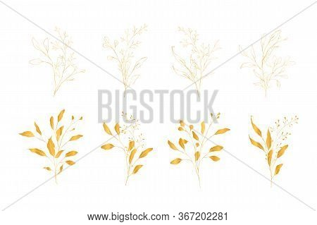 Botanical Line Art Silhouette Golden Leaves Hand Drawn Pencil Sketches Isolated On White Background.