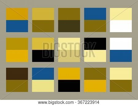 Bright Color Palette Guide Vector Illustration Set. Conceptual Black, White, Blue, Golden Yellow And