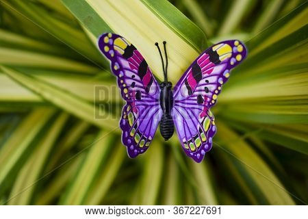 Selective Focus Of Beautiful Purple Butterfly Figurine Decoration On Real Natural Christmas Tree Pla