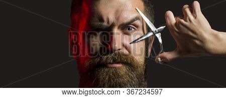 Bearded Man, Long Beard, Brutal, With Moustache, Haircut. Barber Scissors. Mens Haircut. Handsome Be