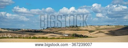 Beautiful Landscape In Tuscany - Wave Hills Covered Green Grass. Tuscany, Italy, Europe.
