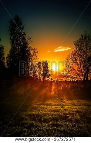 Beautiful Sunset In The Forest Meadow In Spring.