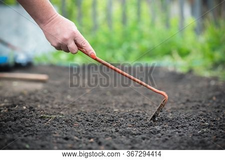 Gardener With A Hoe Loosens The Soil In The Garden Close Up.
