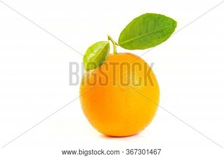 Orange Fruit Isolated On White Background. Fresh Orange Fruit. Single Orange Fruit.