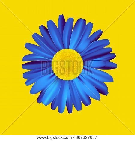 Blue Flower Isolated On Bright Yellow Background. Premium Vector.