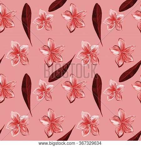 Frangipani Plumeria Tropical Flowers In Monochrome Pink. Seamless Pattern Background. Tropical Flora
