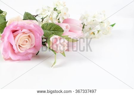Element For Design. Flower Close Up Background. Flowers For Postcard And Home Decoration. Beautiful