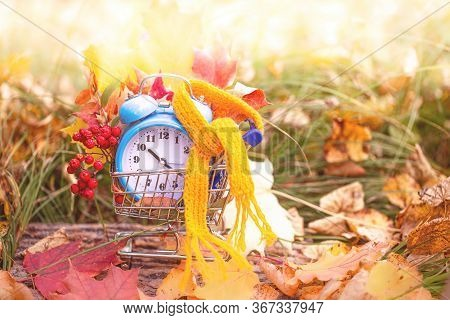 Vintage Alarm Clock With A Scarf And Maple Tree Leaves In Autumn Forest. Autumn Season Image Style.